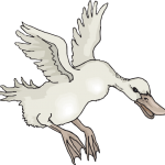 Landing White Duck.svg.hi
